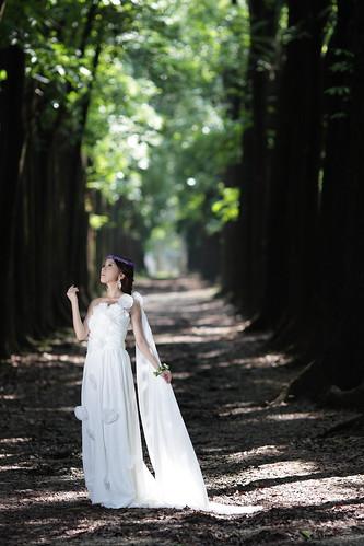 無料写真素材, 人物, 女性  アジア, ウエディングドレス, 人物  森林, 人物  見上げる, 台湾人