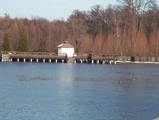 Héviz thermal lake