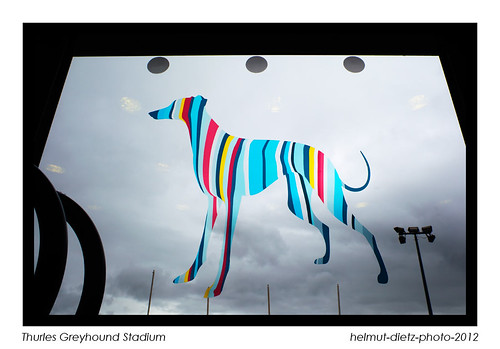 Thurles Greyhound Stadium: IGB (Irish Greyhound Board) logo