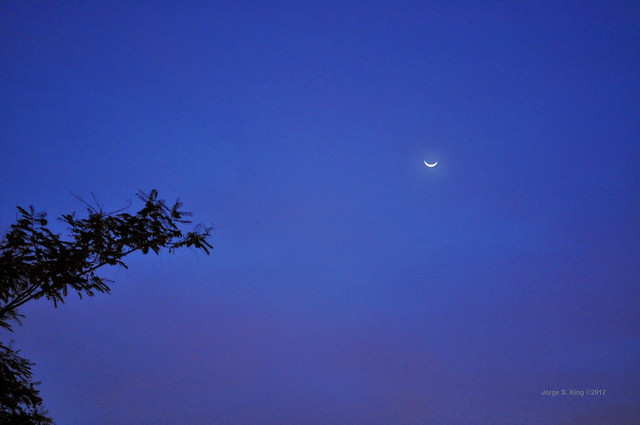 Halo de Luna