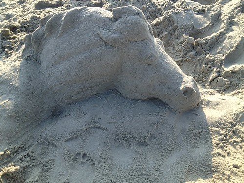 My Sand Horse