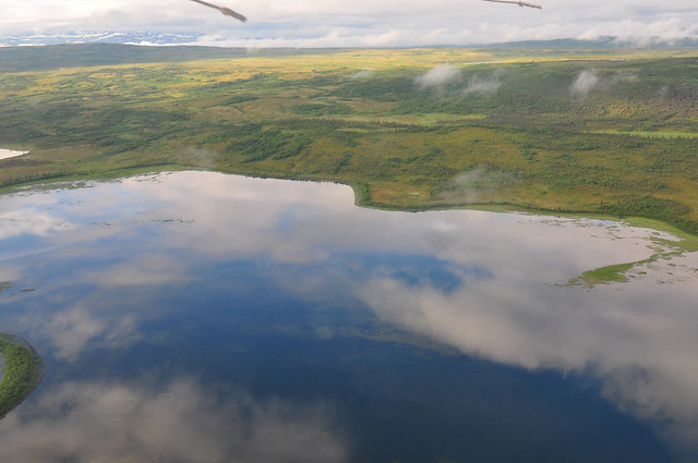 View from the float plane [Katmai National Park]