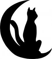 Le Chat d'Ilonse