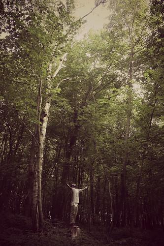 [フリー画像素材] 人物, 人物 - 森林 ID:201208270400