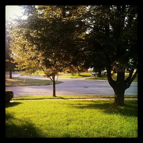 Morning, sunshine.
