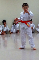 taekkyeon(0.0), black belt(0.0), shorinji kempo(0.0), hapkido(1.0), individual sports(1.0), contact sport(1.0), sports(1.0), tang soo do(1.0), combat sport(1.0), martial arts(1.0), karate(1.0), judo(1.0), japanese martial arts(1.0), jujutsu(1.0),