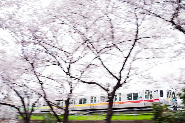 京王電鉄井の頭線1000系 1029F レインボー編成