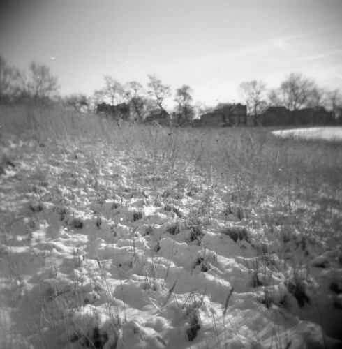 A slice of Winter Prairie