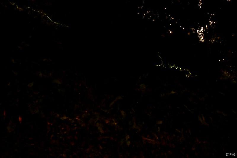 宜蘭景點頭城農場螢火蟲兩天一夜行程推薦 (26)