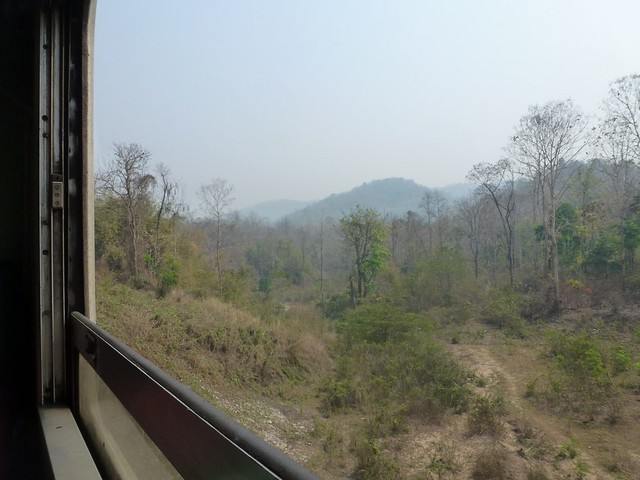 A view from the train