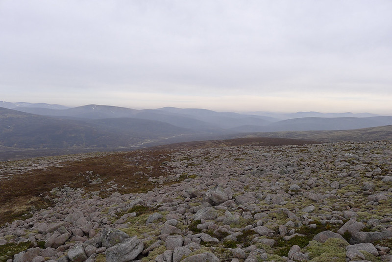 Looking east down the Tarf