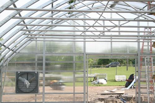 Shots of Greenhouse
