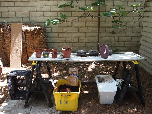 New ad hoc potting bench