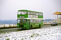 Buses & TfL Road Vehicles