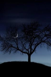 もうすぐ新月