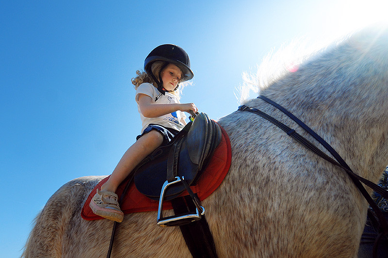 Horse-riding session