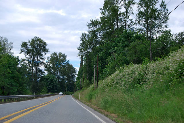 SR 203 south of Duvall
