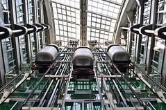 Elevate My Mind - Ludwig Erhard Haus