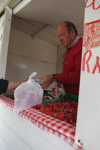 Strawberry Stop