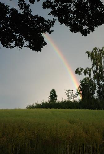 rainbow nyköping