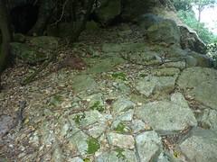 Brèche du Carciara : suite du chemin en RG dans la partie amont de la brèche avec une partie dallée