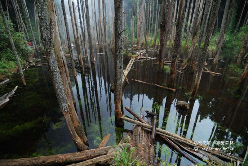 2012_0715_迷霧之旅。初訪忘憂森林DSC_5056