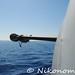 Fregata Libeccio (8)