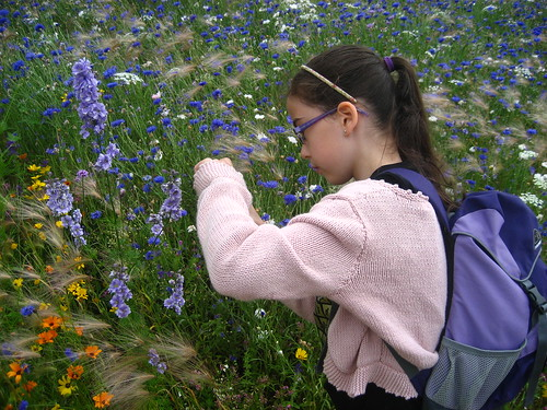 Livvy photographs flowers