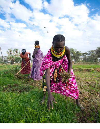 Woman farmers in Kenya, a country where food security is projected to improve over the next decade Photo: World Food Programme