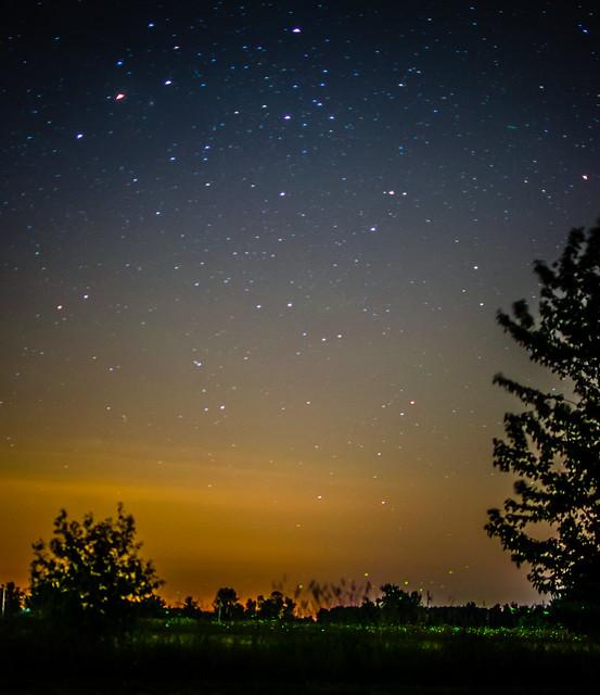 Fireflies in a Summer Night Sky | Flickr - Photo Sharing!