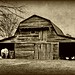 The Old Moseley Barn:  Northern Edgecombe County, North Carolina