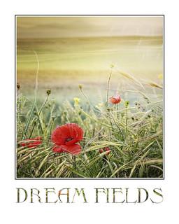 Dream Fields {framed}