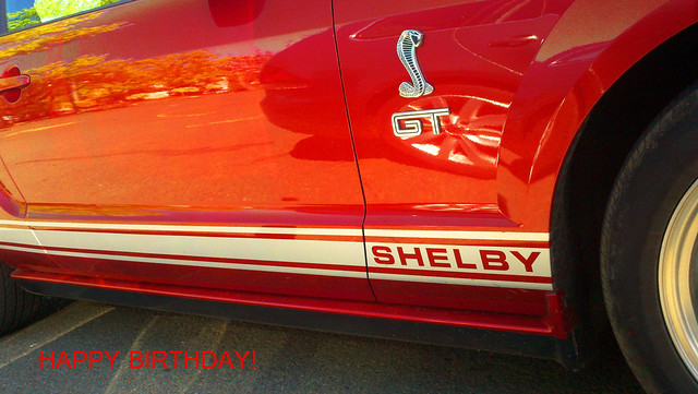 Happy Birthday Shelby!