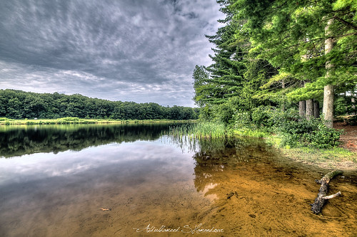 usa tree water beauty boston river landscape ma photography photo chaos ashes syria mass scape damascus hdr waterscape hopkintonstatepark abdulhameedwaheedshamandour
