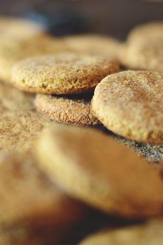 Pesto Cookies