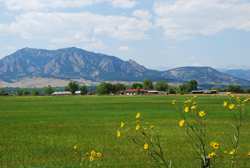 Field and Flatirons