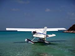 aviation, airplane, wing, vehicle, light aircraft, sea, seaplane, ultralight aviation,