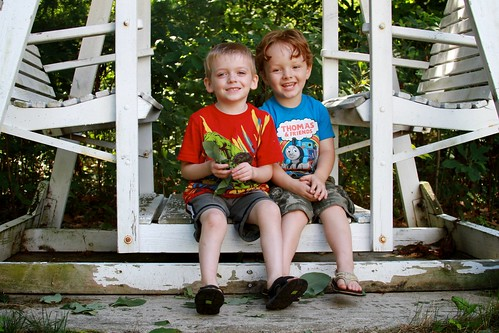 Cousins on a Swing, Charlie & Aidan