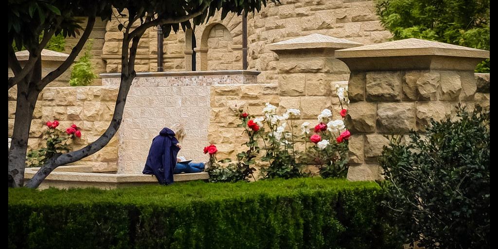 Solitude - Stanford - 2014