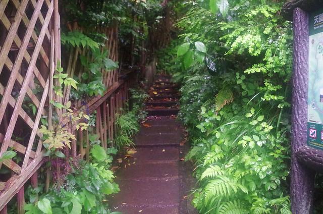 toomilog-tengoku_Hiking_trail033