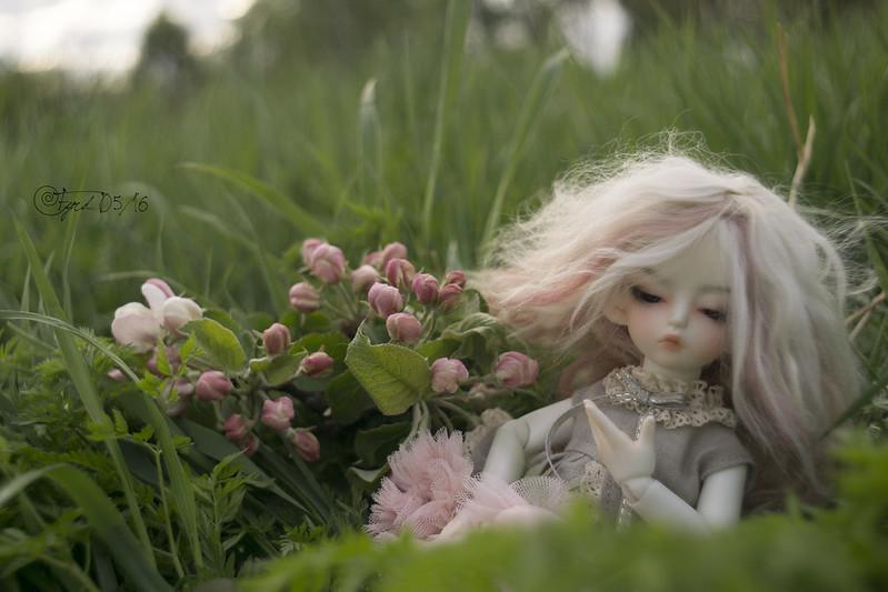 Grassland Fauns 07