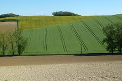 Campagne en Languedoc-Roussillon - Photo of Peyrefitte-sur-l'Hers