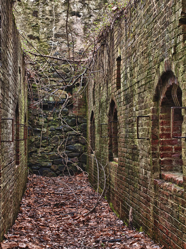 Old Mill Ovens by Suzanne Kreitzberg Photography