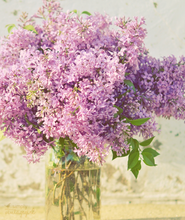 April Lilacs