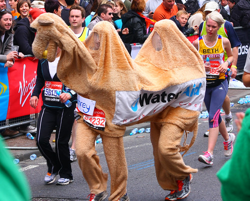 London Marathon 2012 Camel