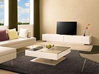 Bravia NX650 series LED LCD HDTV.