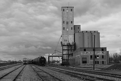 Elevator in Wichita Falls TX, along BNSF tracks