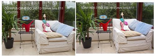 olympus-u-sony - Comparison between Olympus OM-D E-M5 12-50mm lens and SONY NEX-7 18-55mm lens