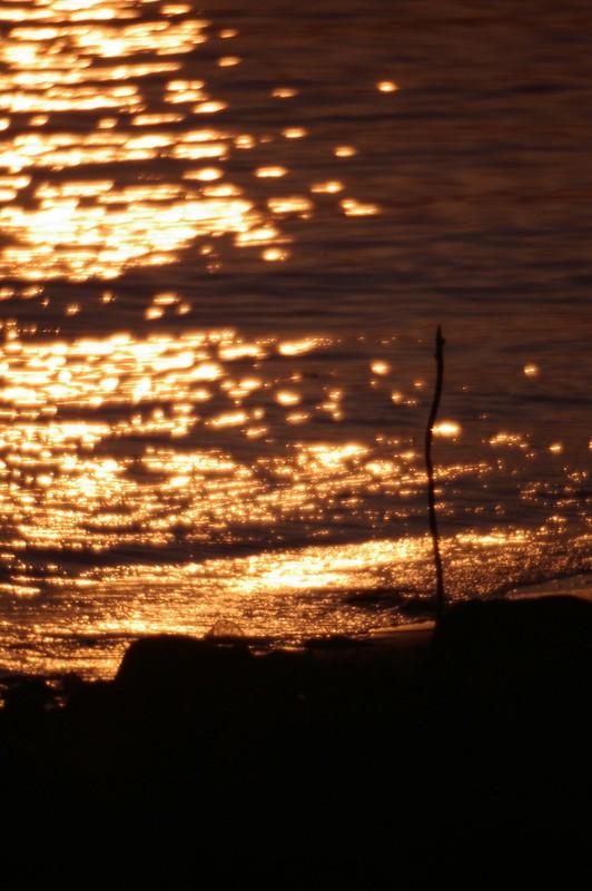 我住的地方 - 的夕陽