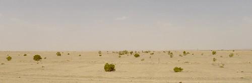 yazd-shiraz-L1020964